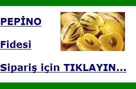 pepino_siparis.jpg