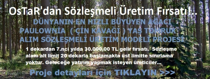 sozlesmeli_tar_m_link.jpg